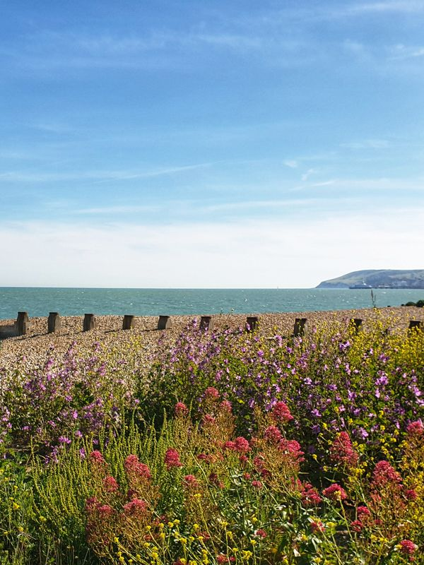 Eastbourne in bloom and a sub-Saharan plume